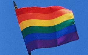 primary__20_20_20_20_20_201246027846-gaypride_flag_1251120c-thumb-500x313-35245